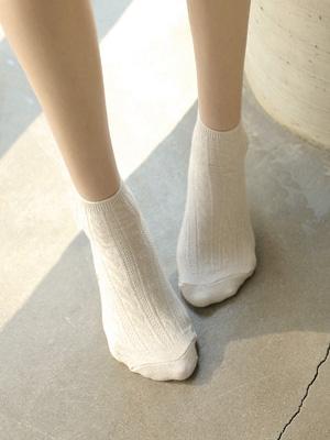 电缆长袜(2 + 1)的